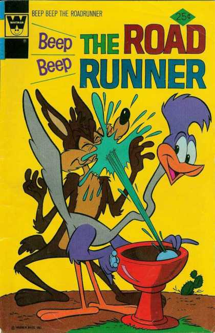 Road Runner 51 - Beep Beep - Wild - Splash - Wild Kayote - Water Splash