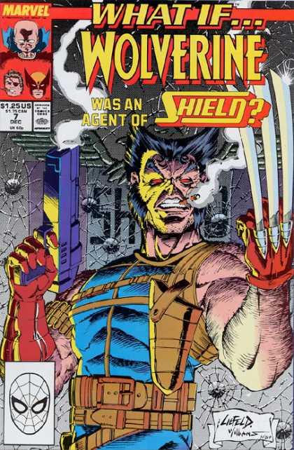 Rob Liefeld Covers 14
