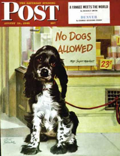 "Saturday Evening Post - 1946-08-24: ""No Dogs Allowed"" (Albert Staehle)"