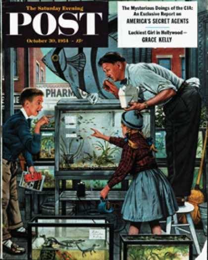 Saturday Evening Post - 1954-10-30: Fish Aquarium (Stevan Dohanos)