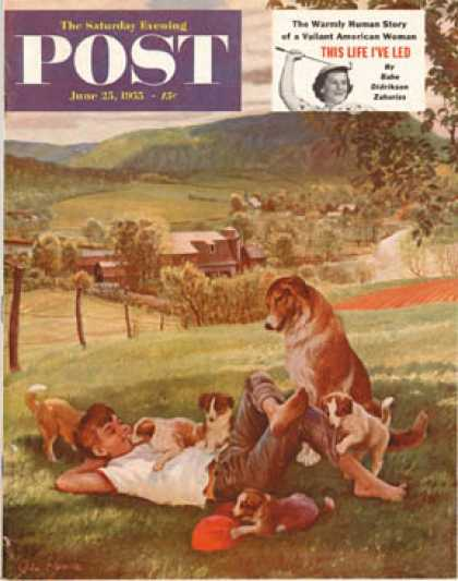 Saturday Evening Post - 1955-06-25: Dog Days of Summer (John Clymer)