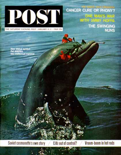 Saturday Evening Post - 1964-01-04: Trained Dolphin (Elgin Ciampi)