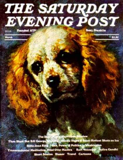 Saturday Evening Post - 1975-03-01: Cocker Spaniel (L. Mayer)