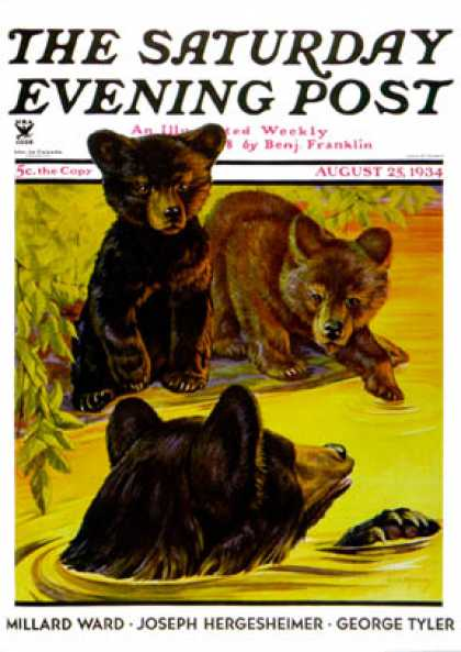 Saturday Evening Post - 1934-08-25: Bear and Cubs in River (Jack Murray)