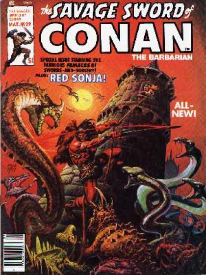 Savage Sword of Conan 29 - Ernie Chan