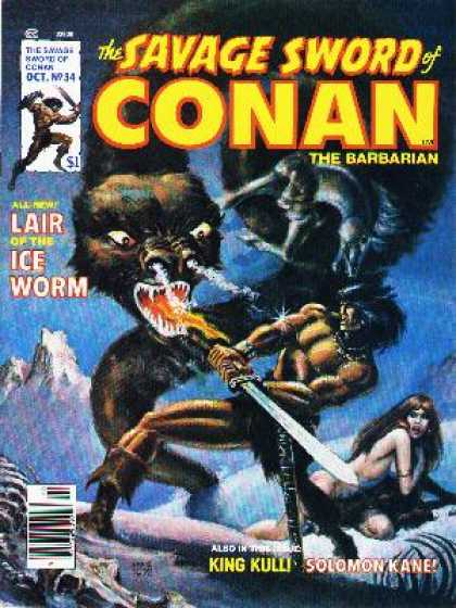 Savage Sword of Conan 34 - Conan - Dragon - Fire - Ice - Battle - Ernie Chan