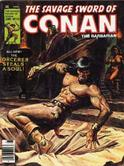 Savage Sword of Conan 53 - Sorcerer - Sword - Trap Door - Muscles - Hole In The Ground