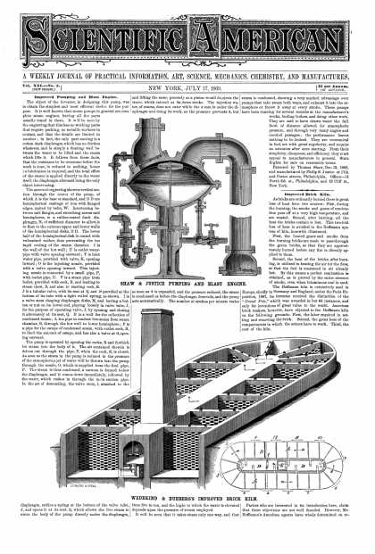 Scientific American - July 17, 1869 (vol. 21, #3)