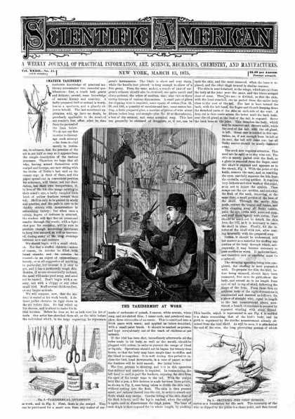 Scientific American - 1875-03-13