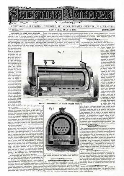 Scientific American - 1875-07-03