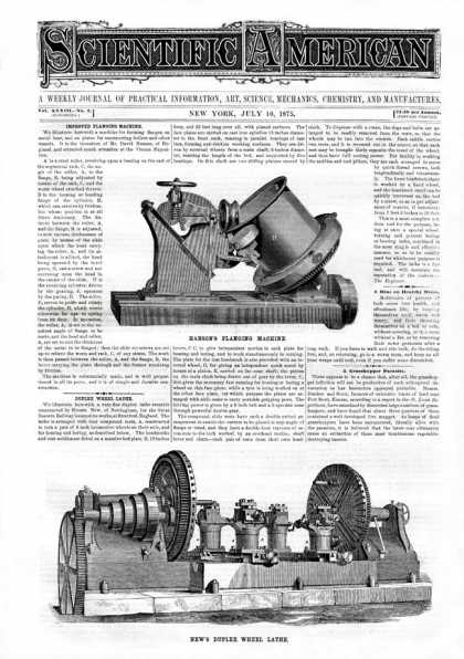 Scientific American - 1875-07-10