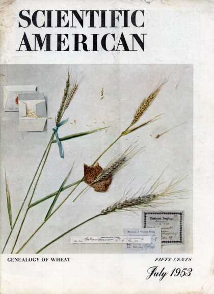 Scientific American - July 1953