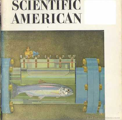 Scientific American - August 1965
