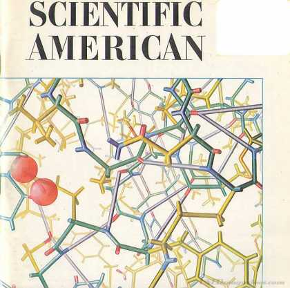 Scientific American - November 1966