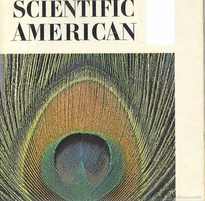 Scientific American - December 1970