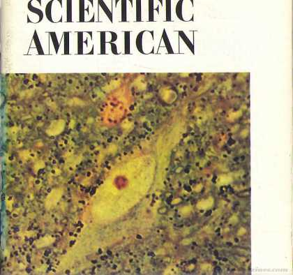 Scientific American - July 1971
