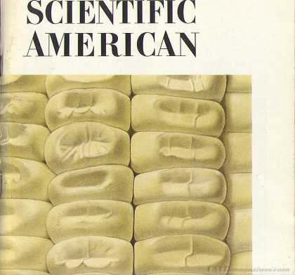 Scientific American - August 1971