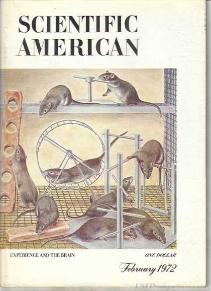 Scientific American - February 1972