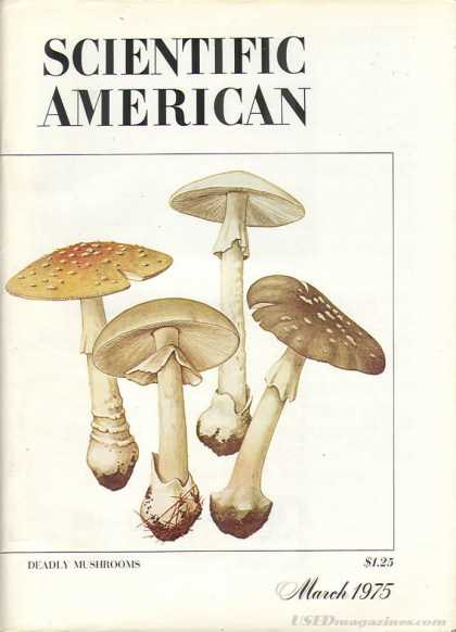 Scientific American - March 1975