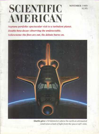Scientific American - November 1989