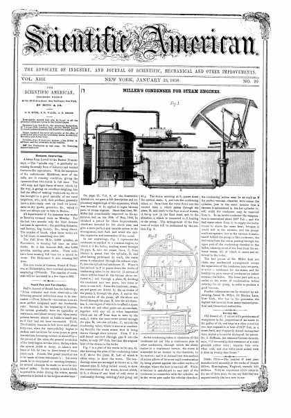 Scientific American - Jan 23, 1858 (vol. 13, #20)