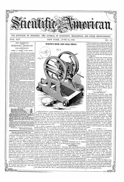 Scientific American - June 25, 1859 (vol. 14, #42)