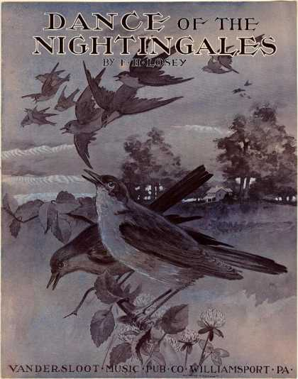 Sheet Music - Dance of the nightingales; Barn dance