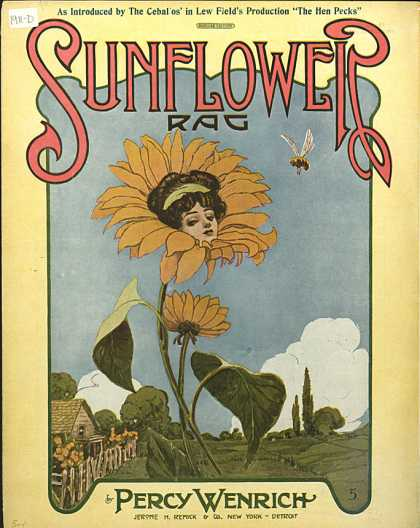 Sheet Music - Sunflower rag