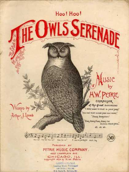 Sheet Music - The owls serenade