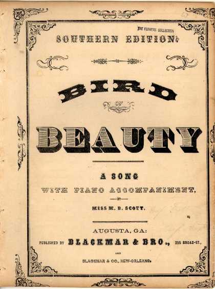 Sheet Music - Bird of beauty