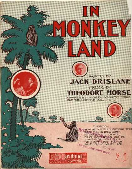 Sheet Music - In monkey land