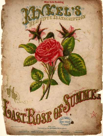 Sheet Music - Last rose of summer