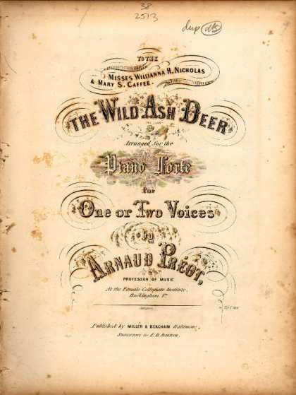 Sheet Music - Wild ash deer