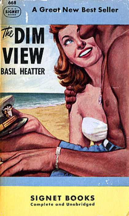 Signet Books - The Dim View - Basil Heatter