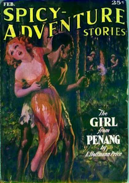 Spicy Adventure Stories Covers