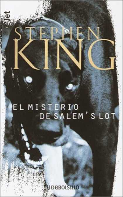 Stephen King Books - Misterio De Salem's Lot