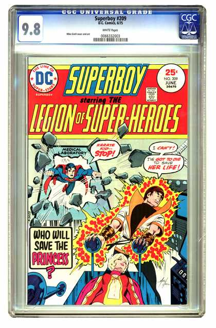 Superboy - Legion of Super-Heroes - Karate Kid - Princess - Laboratory - Bust - Save - Mike Grell