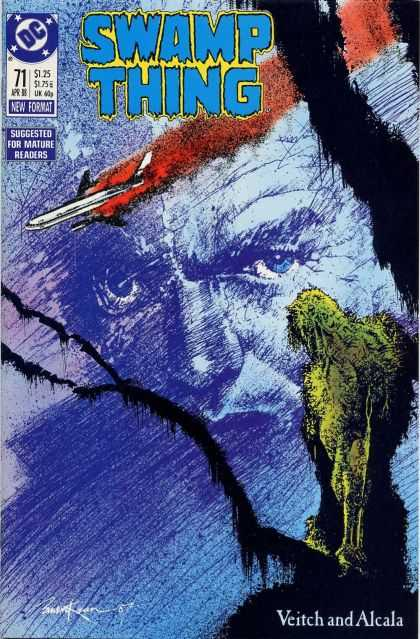 Swamp Thing 71 - Dave McKean