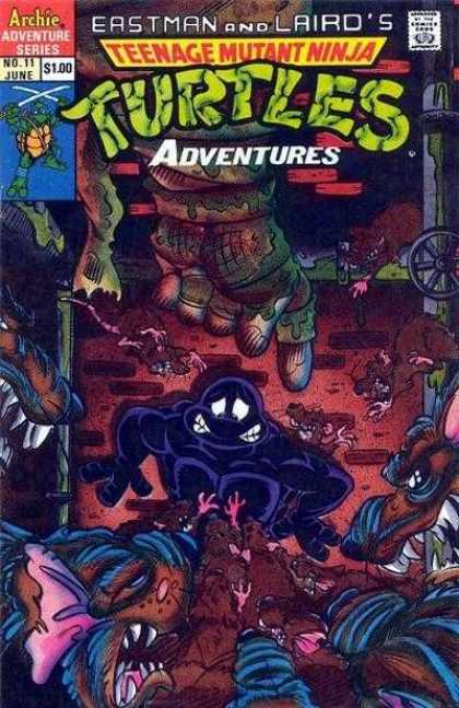Teenage Mutant Ninja Turtles Adventures 2 11