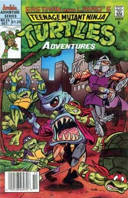 Teenage Mutant Ninja Turtles Adventures 2 25