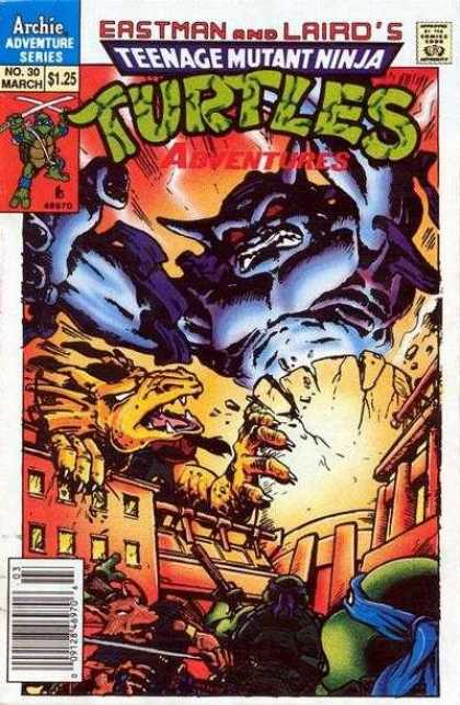 Teenage Mutant Ninja Turtles Adventures 2 30