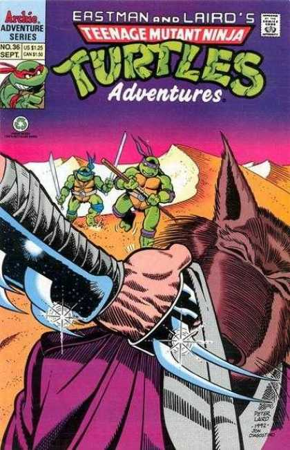 Teenage Mutant Ninja Turtles Adventures 2 36