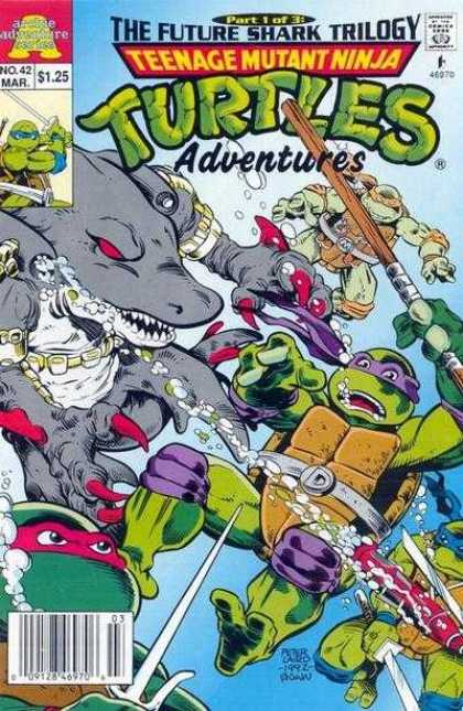Teenage Mutant Ninja Turtles Adventures 2 42