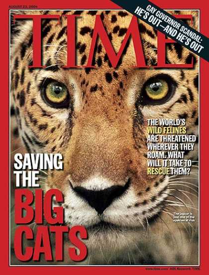 Time - Saving the Big Cats - Aug. 23, 2004 - Cats - Wildlife - Animals - Africa - Envir