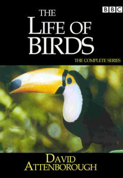 TV Series - David Attenborough - Life Of Birds