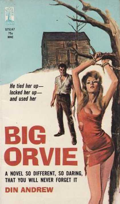 Vintage Books - Big Orvie - Din Andrew