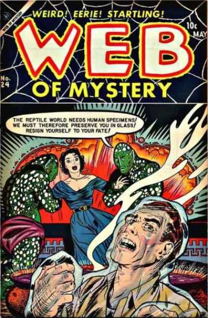 Web of Mystery 24