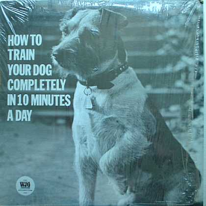 Weirdest Album Covers - How To Train Your Dog Completely In 10 Minutes A day