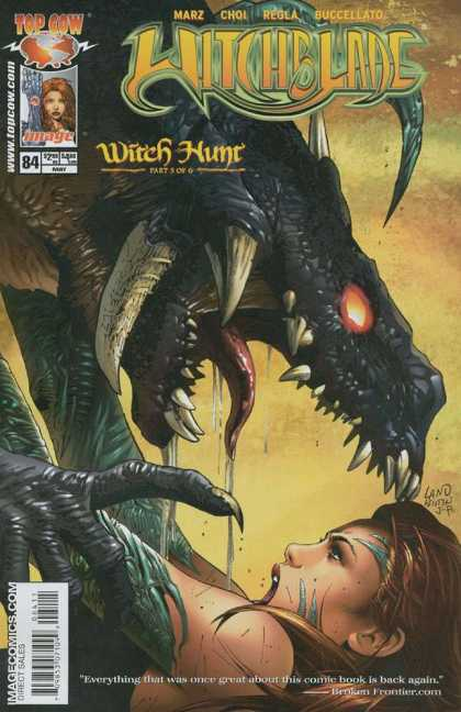 Witchblade 84