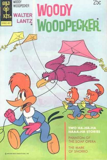 Woody Woodpecker 137 - Kites - Bird - Field - Sky - Grass